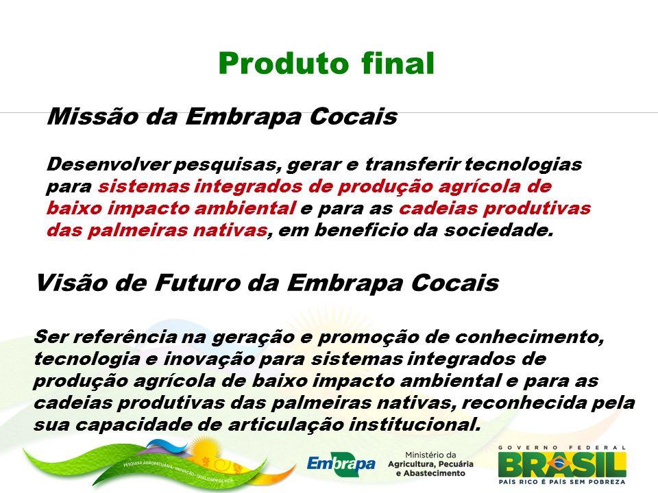 Produto final Missão da Embrapa Cocais Desenvolver pesquisas, gerar e transferir tecnologias para sistemas integrados de produção agrícola de baixo im