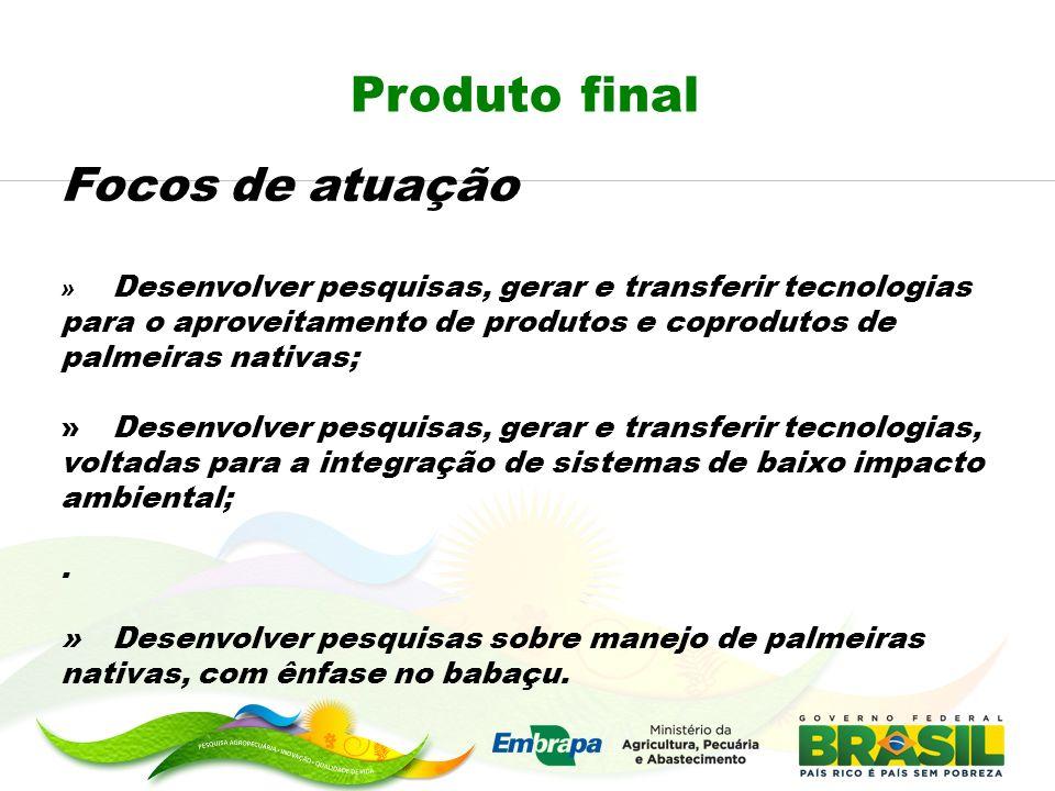 Produto final Focos de atuação » Desenvolver pesquisas, gerar e transferir tecnologias para o aproveitamento de produtos e coprodutos de palmeiras nat
