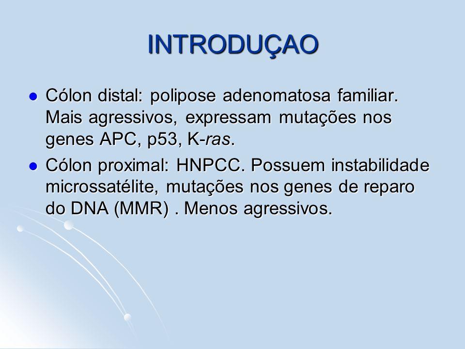 INTRODUÇAO Cólon distal: polipose adenomatosa familiar. Mais agressivos, expressam mutações nos genes APC, p53, K-ras. Cólon distal: polipose adenomat