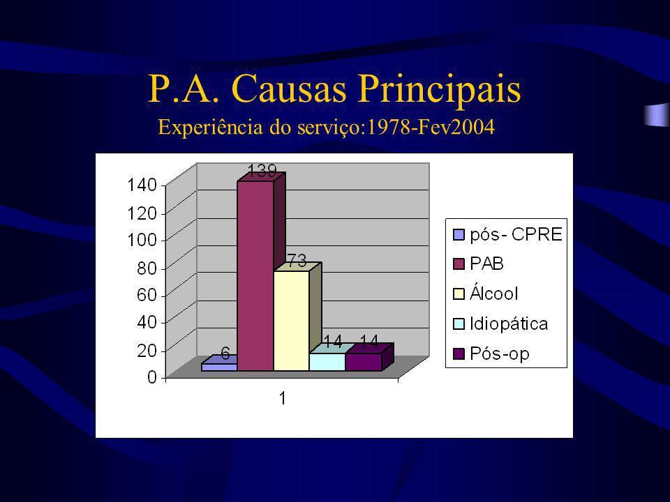 P.A. Causas Principais Experiência do serviço:1978-Fev2004