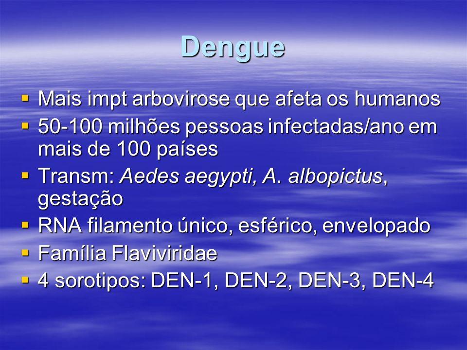 Dengue Mais impt arbovirose que afeta os humanos Mais impt arbovirose que afeta os humanos 50-100 milhões pessoas infectadas/ano em mais de 100 países