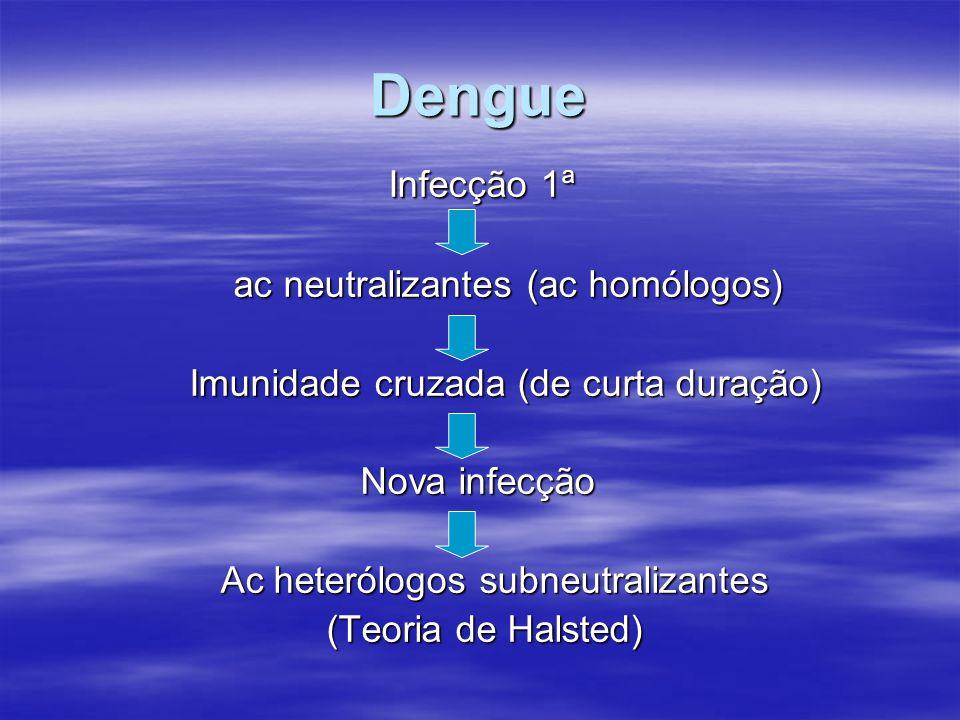 Dengue Infecção 1ª Infecção 1ª ac neutralizantes (ac homólogos) Imunidade cruzada (de curta duração) Imunidade cruzada (de curta duração) Nova infecçã