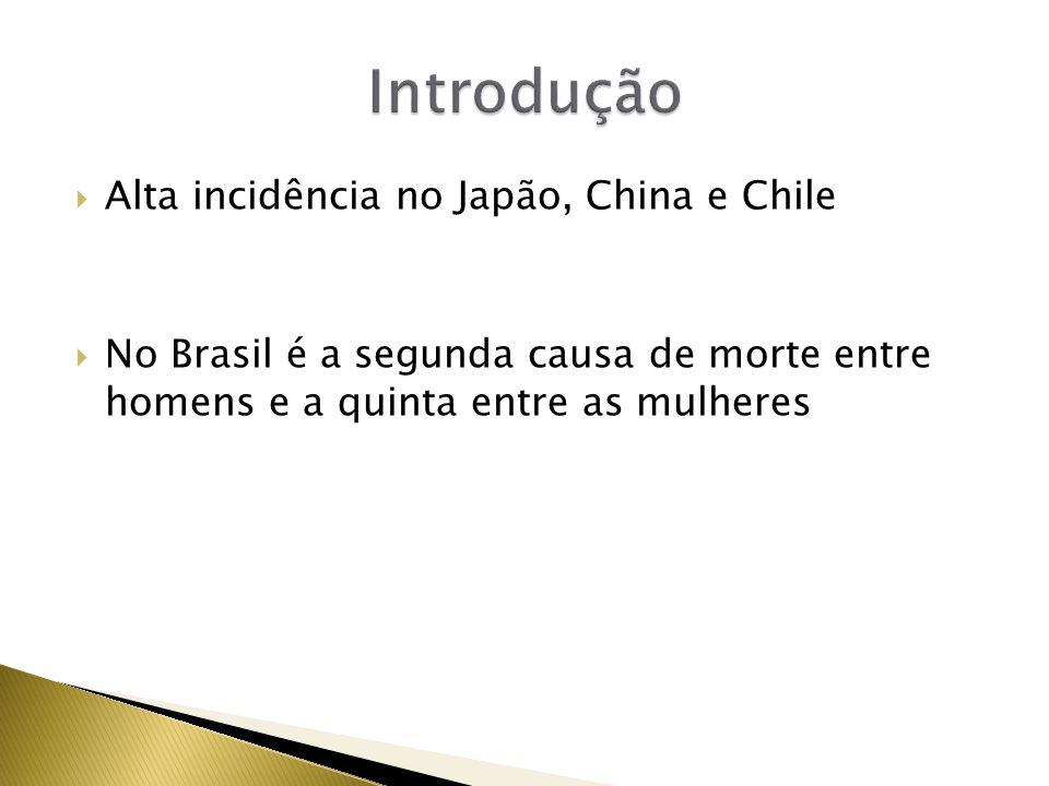 Alta incidência no Japão, China e Chile No Brasil é a segunda causa de morte entre homens e a quinta entre as mulheres