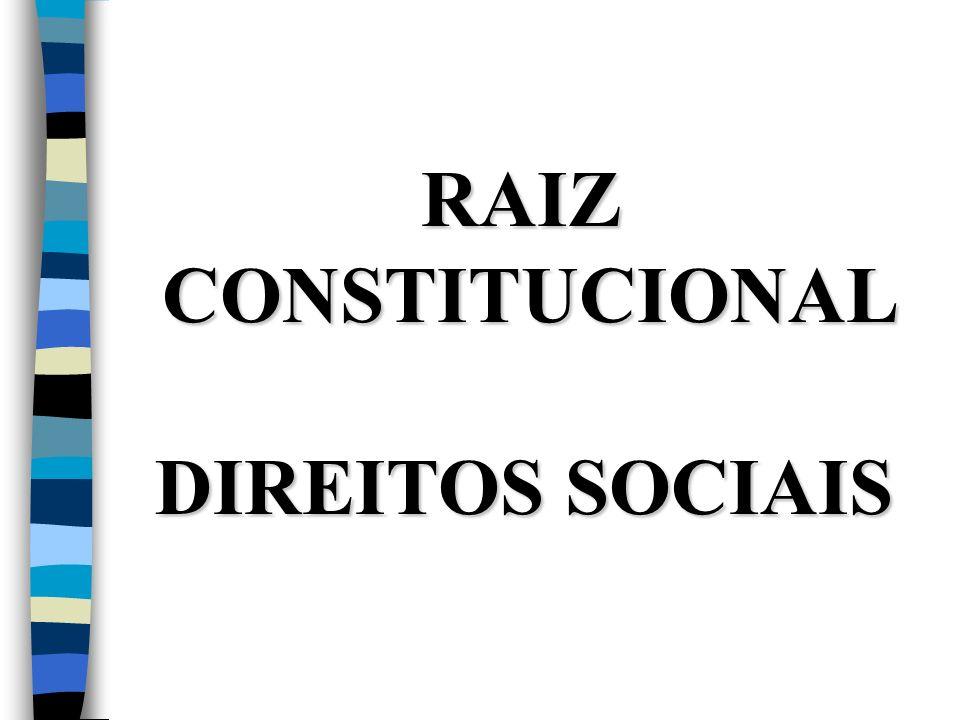 RAIZ CONSTITUCIONAL DIREITOS SOCIAIS