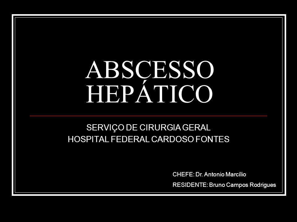 ABSCESSO HEPÁTICO SERVIÇO DE CIRURGIA GERAL HOSPITAL FEDERAL CARDOSO FONTES CHEFE: Dr.
