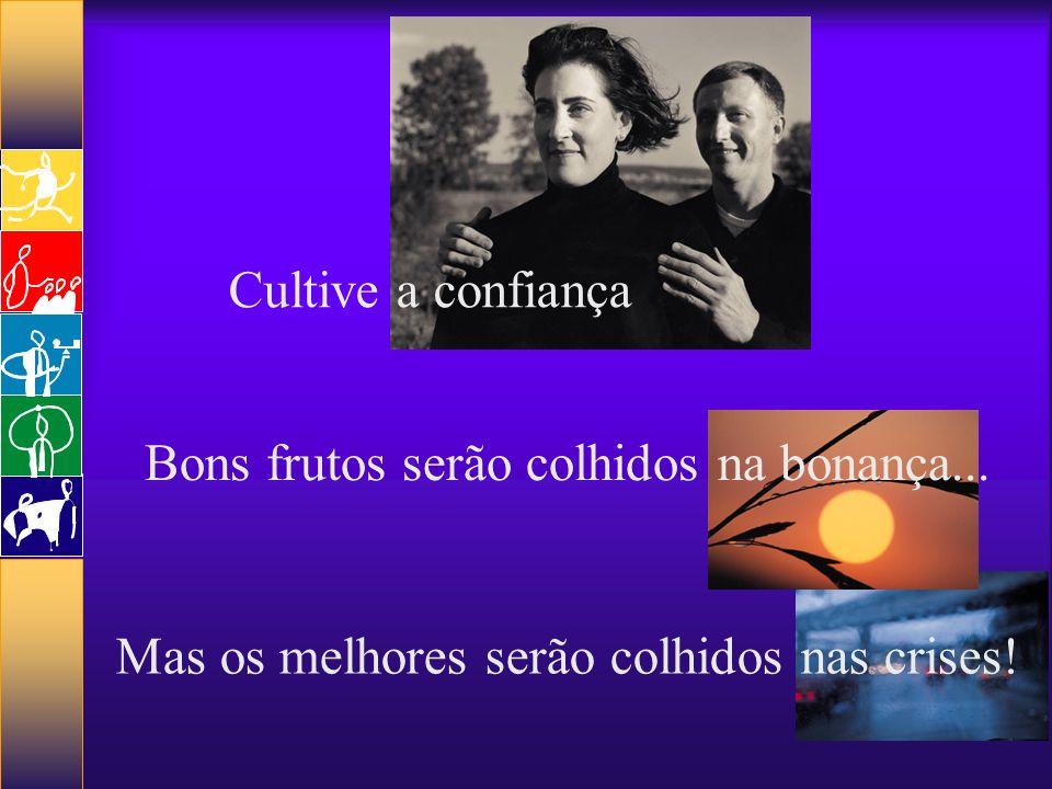 Cultive a confiança Bons frutos serão colhidos na bonança... Mas os melhores serão colhidos nas crises!