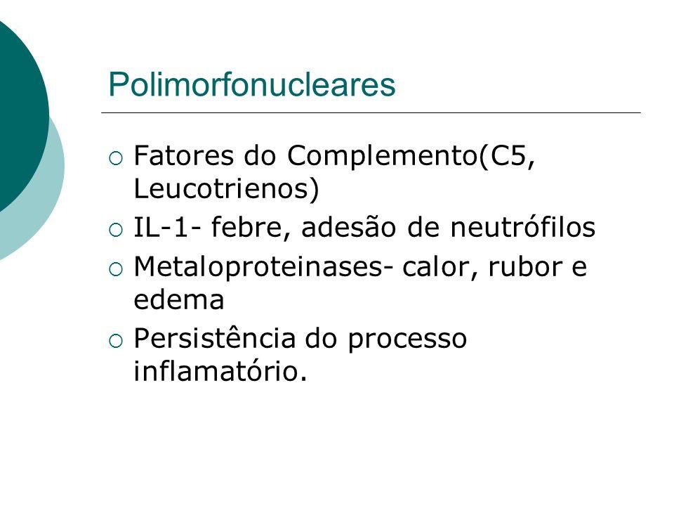 Cicatrização de feridas Fase proliferativa Angiogênese Fibroplasia Epitelização Tecido de granulaçao