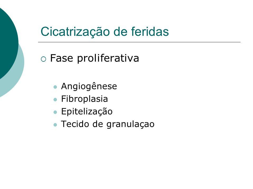Infecção do Sítio Cirúrgico Infecção hospitalar mais comum dos EUA(38%) Terceira mais comum do Brasil.
