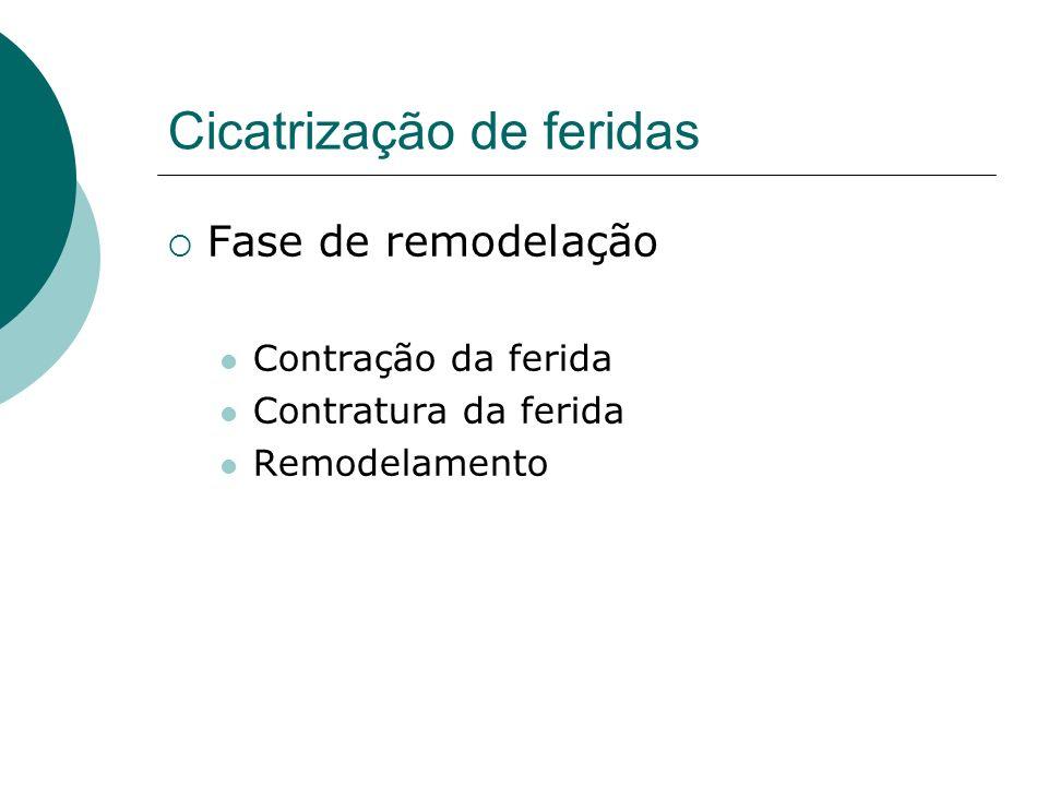 Cicatrização anormal de feridas Fatores que inibem a cicatrização de feridas Cicatrizes hipertróficas Quelóides Feridas crônicas que não cicatrizam