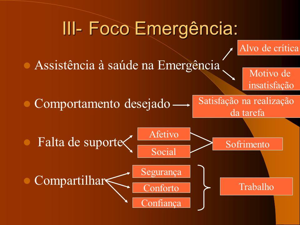 III- Foco Emergência: Assistência à saúde na Emergência Comportamento desejado Falta de suporte Compartilhar Alvo de crítica Motivo de insatisfação Sa