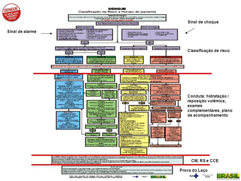 Sinal de choque Conduta: hidratação / reposição volêmica, exames complementares, plano de acompanhamento CM, RS e CCE Prova do Laço Sinal de alarme Cl