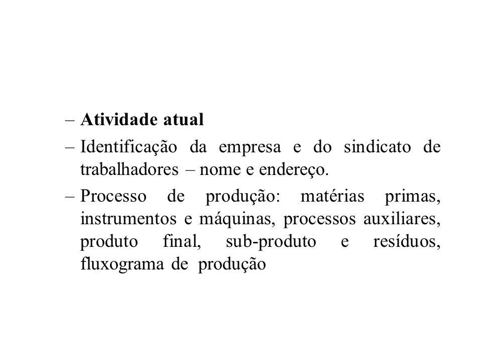 –Atividade atual –Identificação da empresa e do sindicato de trabalhadores – nome e endereço.
