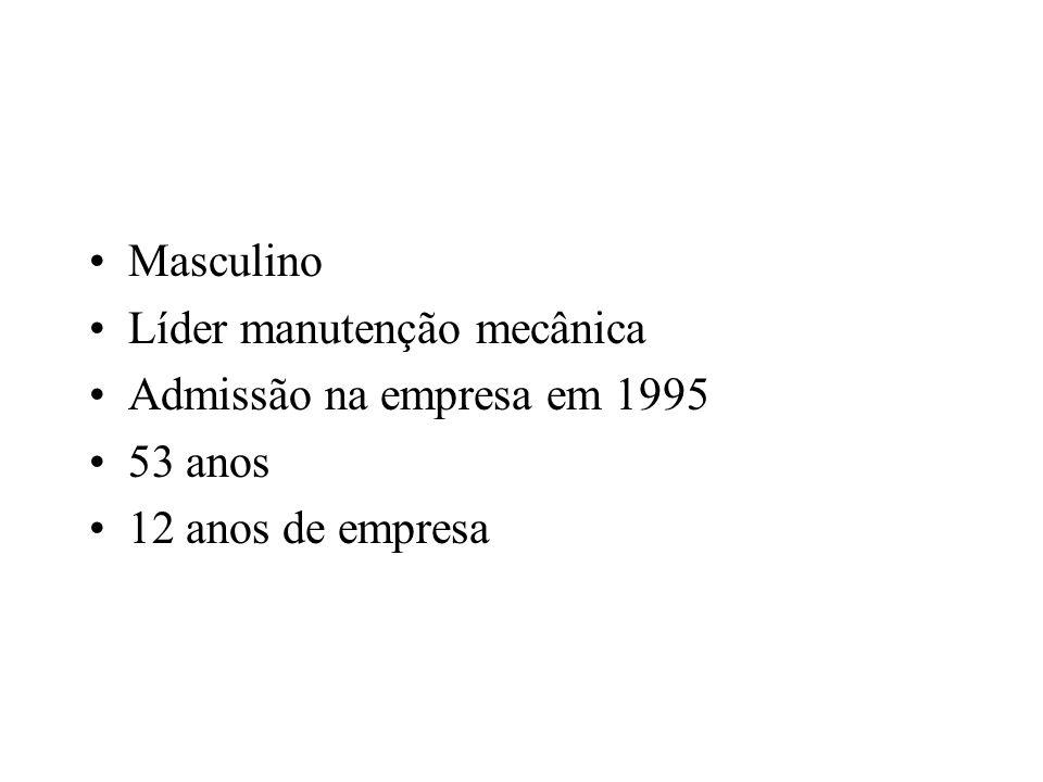 Masculino Líder manutenção mecânica Admissão na empresa em 1995 53 anos 12 anos de empresa