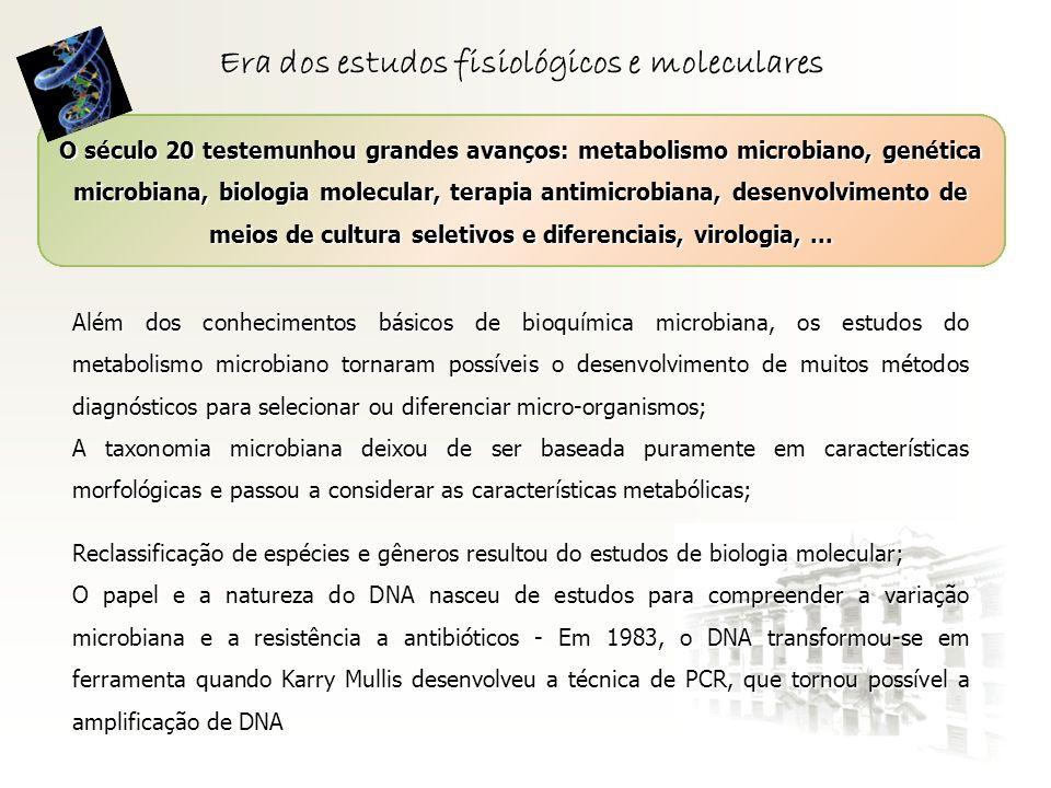 Era dos estudos fisiológicos e moleculares O século 20 testemunhou grandes avanços: metabolismo microbiano, genética microbiana, biologia molecular, t