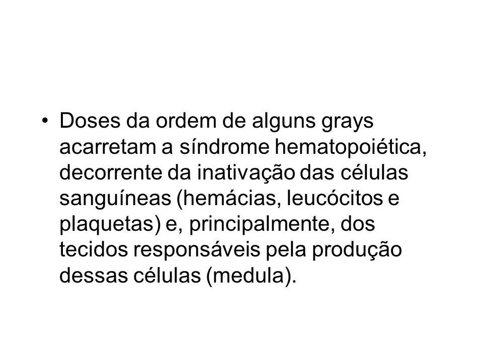 Doses da ordem de alguns grays acarretam a síndrome hematopoiética, decorrente da inativação das células sanguíneas (hemácias, leucócitos e plaquetas)