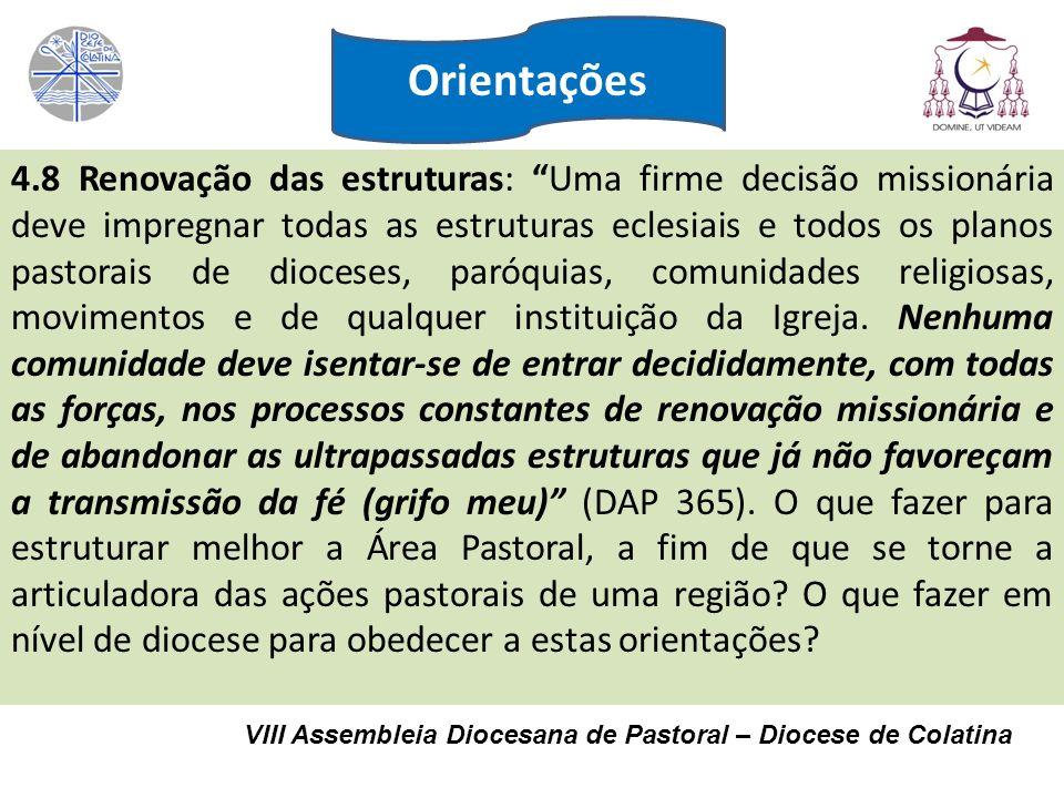 VIII Assembleia Diocesana de Pastoral – Diocese de Colatina 4.8 Renovação das estruturas: Uma firme decisão missionária deve impregnar todas as estrut