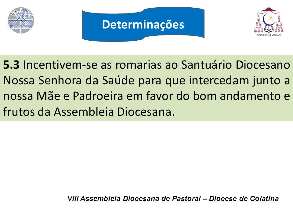 VIII Assembleia Diocesana de Pastoral – Diocese de Colatina 5.3 Incentivem-se as romarias ao Santuário Diocesano Nossa Senhora da Saúde para que inter
