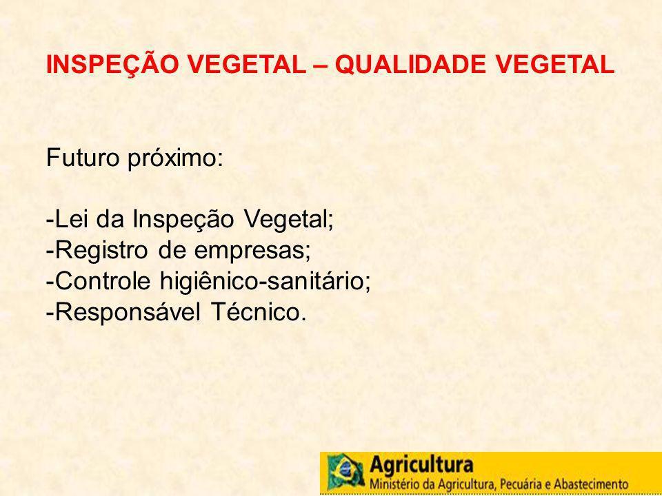 INSPEÇÃO VEGETAL – QUALIDADE VEGETAL Futuro próximo: -Lei da Inspeção Vegetal; -Registro de empresas; -Controle higiênico-sanitário; -Responsável Técn