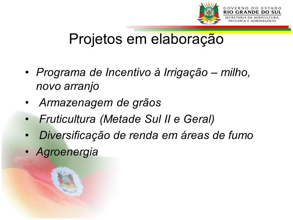 Projetos em elaboração Programa de Incentivo à Irrigação – milho, novo arranjo Armazenagem de grãos Fruticultura (Metade Sul II e Geral) Diversificaçã