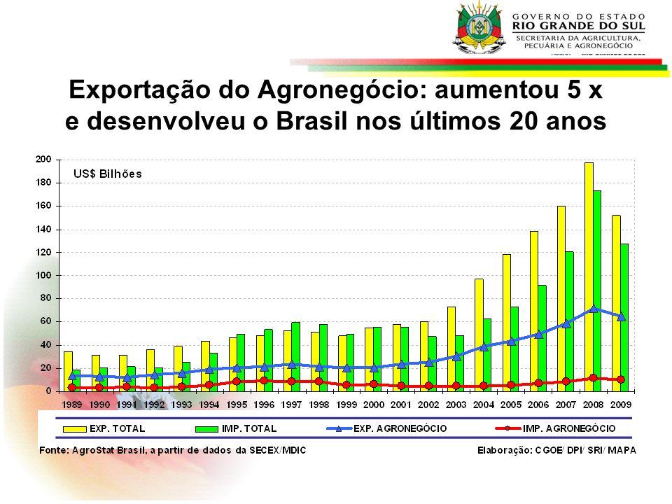AGRONEGÓCIO: Projeções de Exportação 2010/11 a 2020/21 MAPA- milhões de ton e bilhões de litros * Produto2010/112020/2021Variação (%) Milho9,114,356,4 Soja Grão29,340,739,0 Suco de laranja2,12,727,7 Carne Frango3,95,233,7 Carne Bovina1,82,329,4 Carne Suína0,60,831,1 Açúcar28,441,445,8 Leite*0,20,350,4 Celulose8,912,540,6 Fonte: AGE/Mapa e SGE/Embrapa