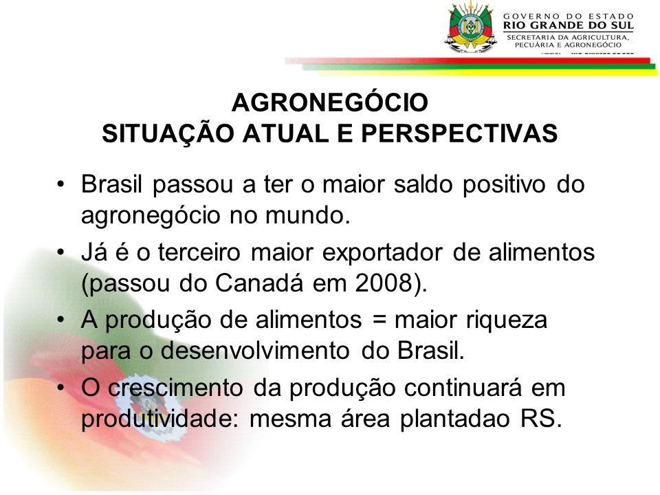Brasil passou a ter o maior saldo positivo do agronegócio no mundo. Já é o terceiro maior exportador de alimentos (passou do Canadá em 2008). A produç