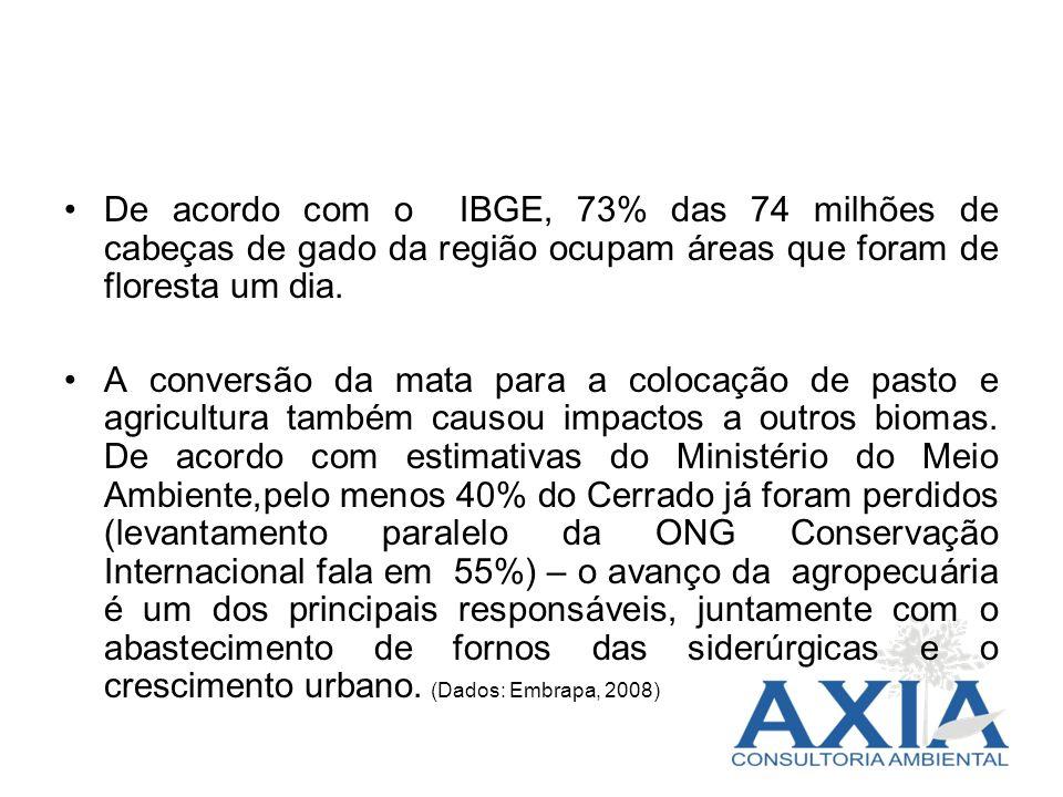 De acordo com o IBGE, 73% das 74 milhões de cabeças de gado da região ocupam áreas que foram de floresta um dia. A conversão da mata para a colocação