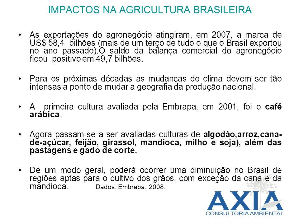 IMPACTOS NA AGRICULTURA BRASILEIRA As exportações do agronegócio atingiram, em 2007, a marca de US$ 58,4 bilhões (mais de um terço de tudo o que o Bra