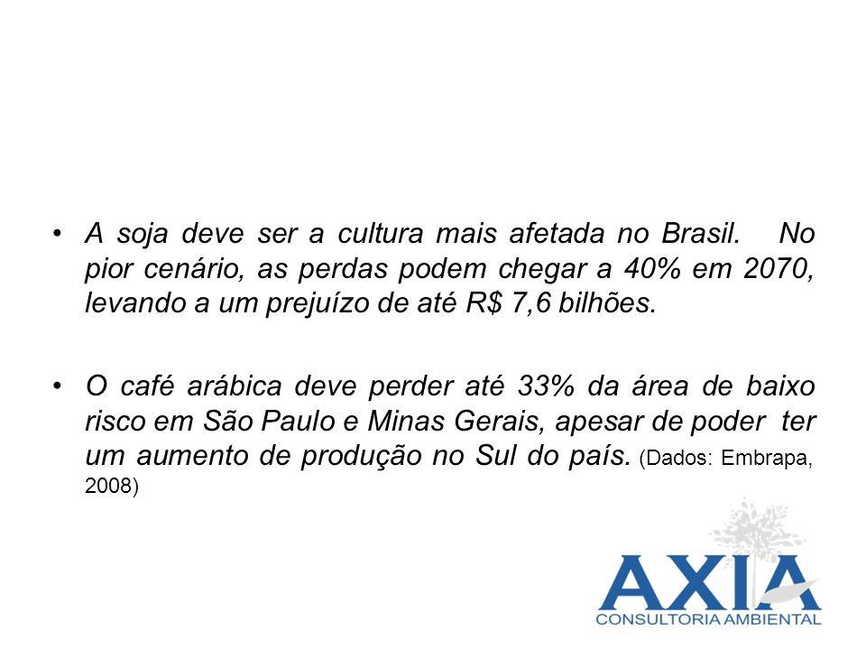 A soja deve ser a cultura mais afetada no Brasil. No pior cenário, as perdas podem chegar a 40% em 2070, levando a um prejuízo de até R$ 7,6 bilhões.
