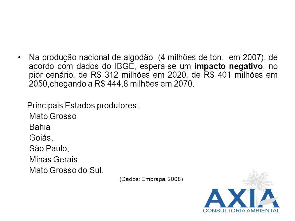 Na produção nacional de algodão (4 milhões de ton. em 2007), de acordo com dados do IBGE, espera-se um impacto negativo, no pior cenário, de R$ 312 mi