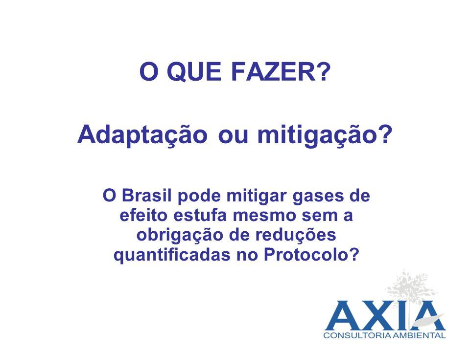 O QUE FAZER? Adaptação ou mitigação? O Brasil pode mitigar gases de efeito estufa mesmo sem a obrigação de reduções quantificadas no Protocolo?