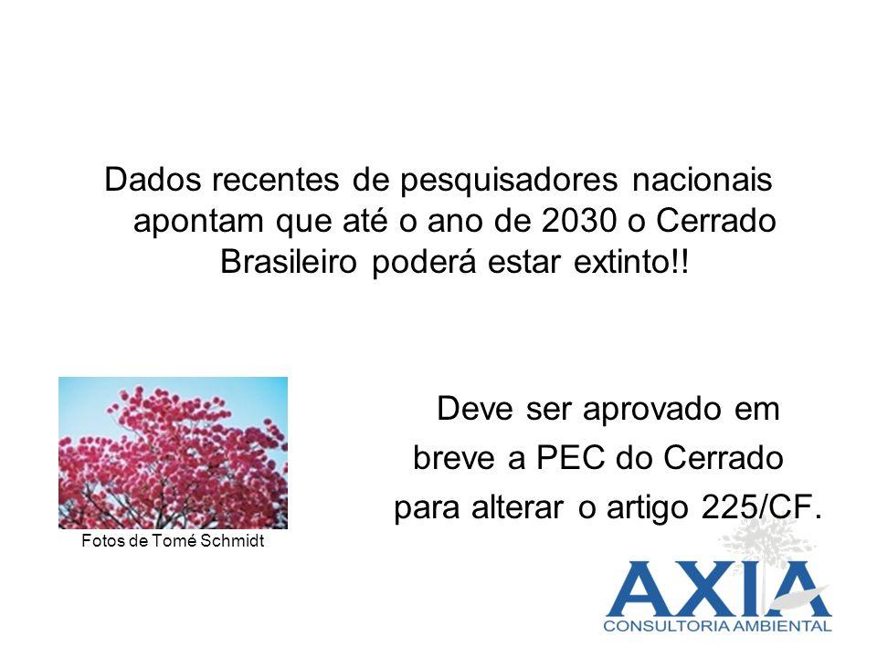 Dados recentes de pesquisadores nacionais apontam que até o ano de 2030 o Cerrado Brasileiro poderá estar extinto!! Deve ser aprovado em breve a PEC d