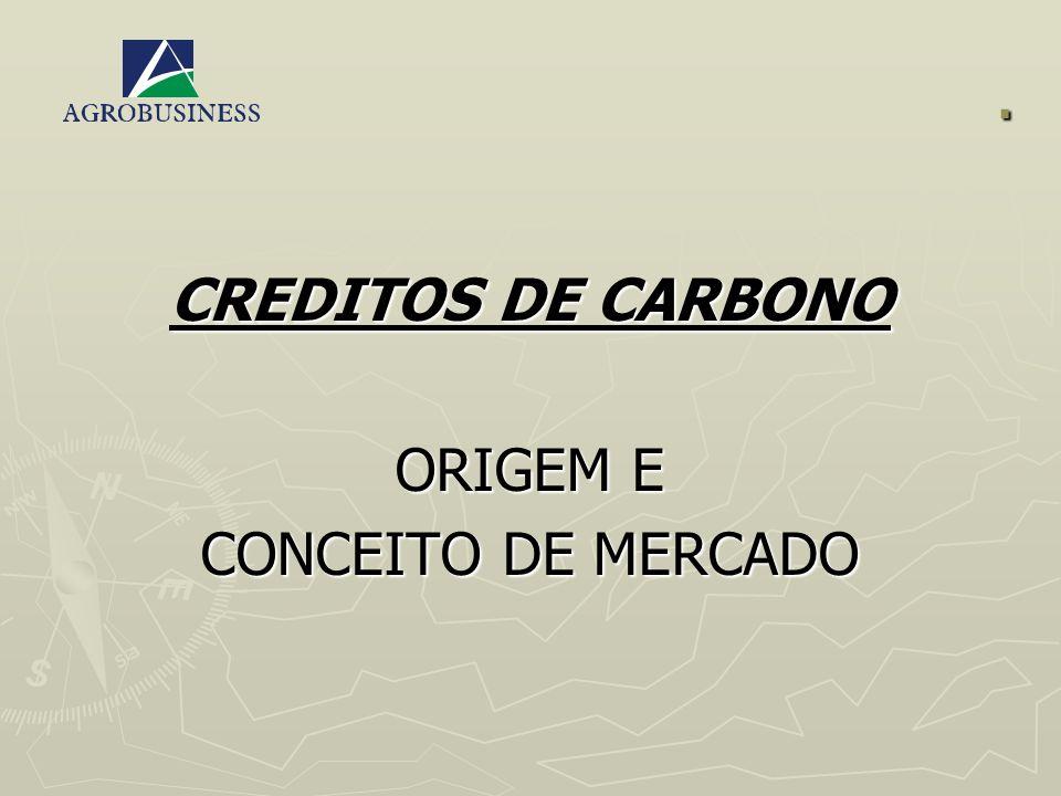 FUTURO DO CRÉDITO DE CARBONO BRASIL TEM GRANDE POTENCIAL DE GERAÇÃO DE CRÉDITOS - PROJETOS FLORESTAIS E NÃO FLORESTAIS.
