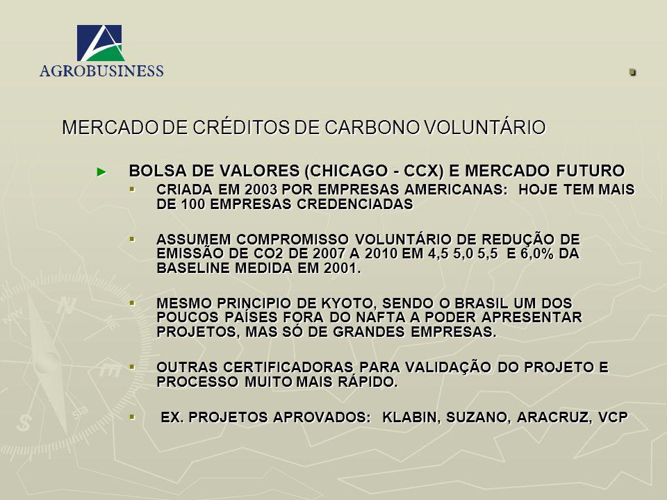 . MERCADO DE CRÉDITOS DE CARBONO VOLUNTÁRIO BOLSA DE VALORES (CHICAGO - CCX) E MERCADO FUTURO BOLSA DE VALORES (CHICAGO - CCX) E MERCADO FUTURO CRIADA