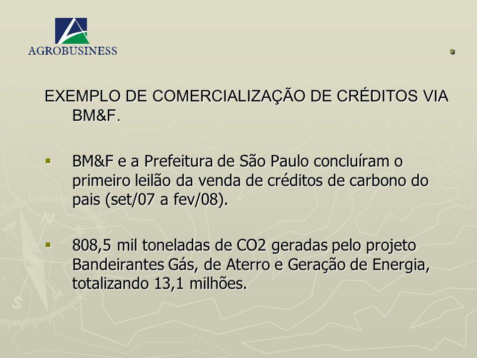 . EXEMPLO DE COMERCIALIZAÇÃO DE CRÉDITOS VIA BM&F. BM&F e a Prefeitura de São Paulo concluíram o primeiro leilão da venda de créditos de carbono do pa