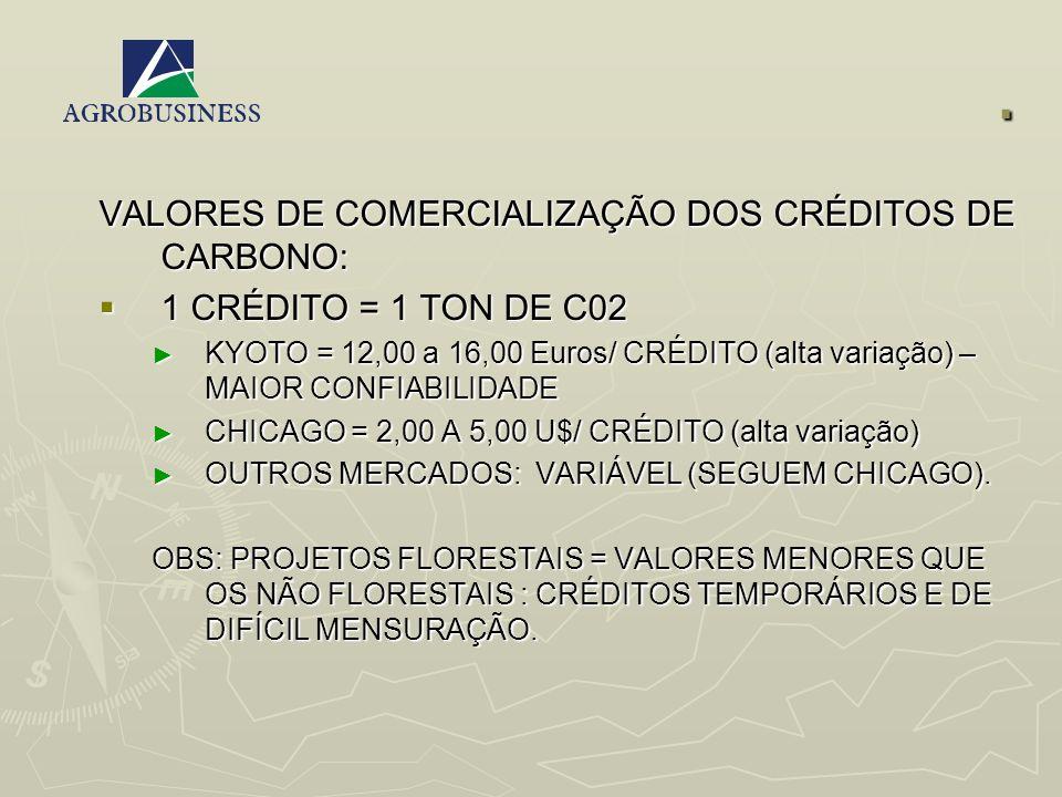 . VALORES DE COMERCIALIZAÇÃO DOS CRÉDITOS DE CARBONO: 1 CRÉDITO = 1 TON DE C02 1 CRÉDITO = 1 TON DE C02 KYOTO = 12,00 a 16,00 Euros/ CRÉDITO (alta var