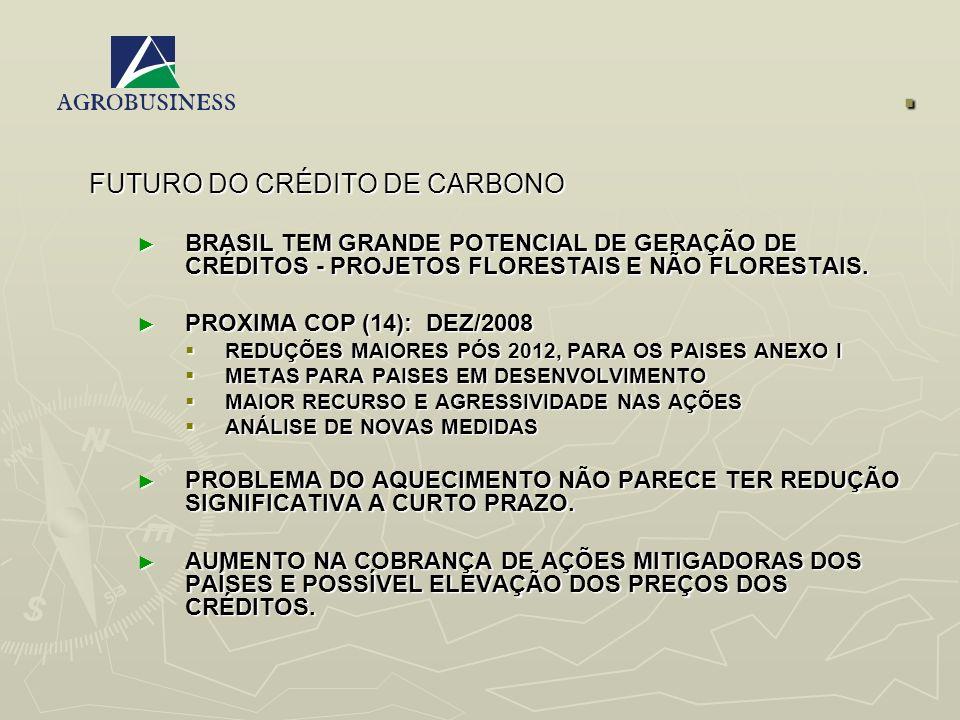 . FUTURO DO CRÉDITO DE CARBONO BRASIL TEM GRANDE POTENCIAL DE GERAÇÃO DE CRÉDITOS - PROJETOS FLORESTAIS E NÃO FLORESTAIS. BRASIL TEM GRANDE POTENCIAL