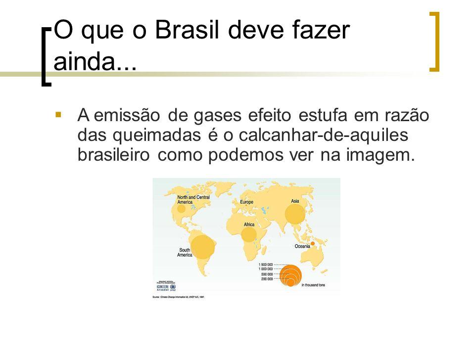 O que o Brasil deve fazer ainda... A emissão de gases efeito estufa em razão das queimadas é o calcanhar-de-aquiles brasileiro como podemos ver na ima