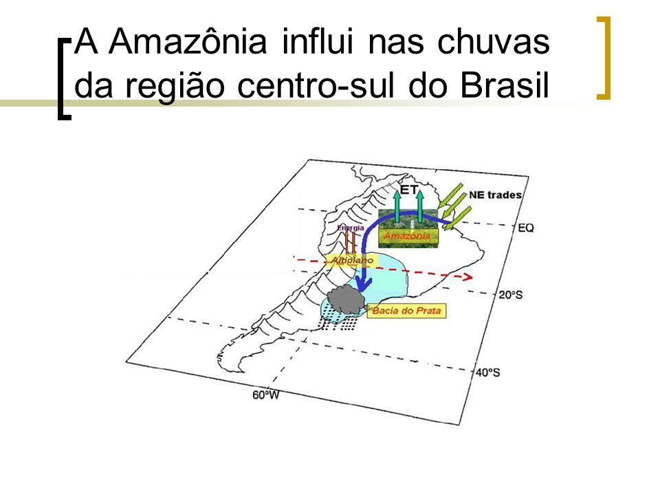 A Amazônia influi nas chuvas da região centro-sul do Brasil