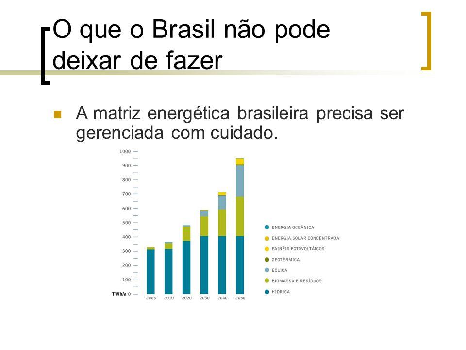 O que o Brasil não pode deixar de fazer A matriz energética brasileira precisa ser gerenciada com cuidado.