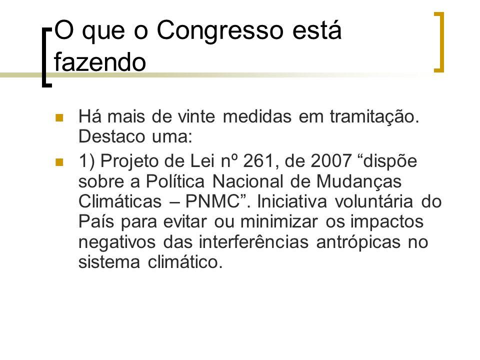 O que o Congresso está fazendo Há mais de vinte medidas em tramitação. Destaco uma: 1) Projeto de Lei nº 261, de 2007 dispõe sobre a Política Nacional