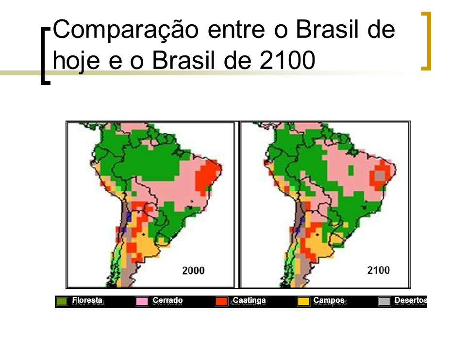 Comparação entre o Brasil de hoje e o Brasil de 2100 Floresta Cerrado Caatinga Campos Desertos