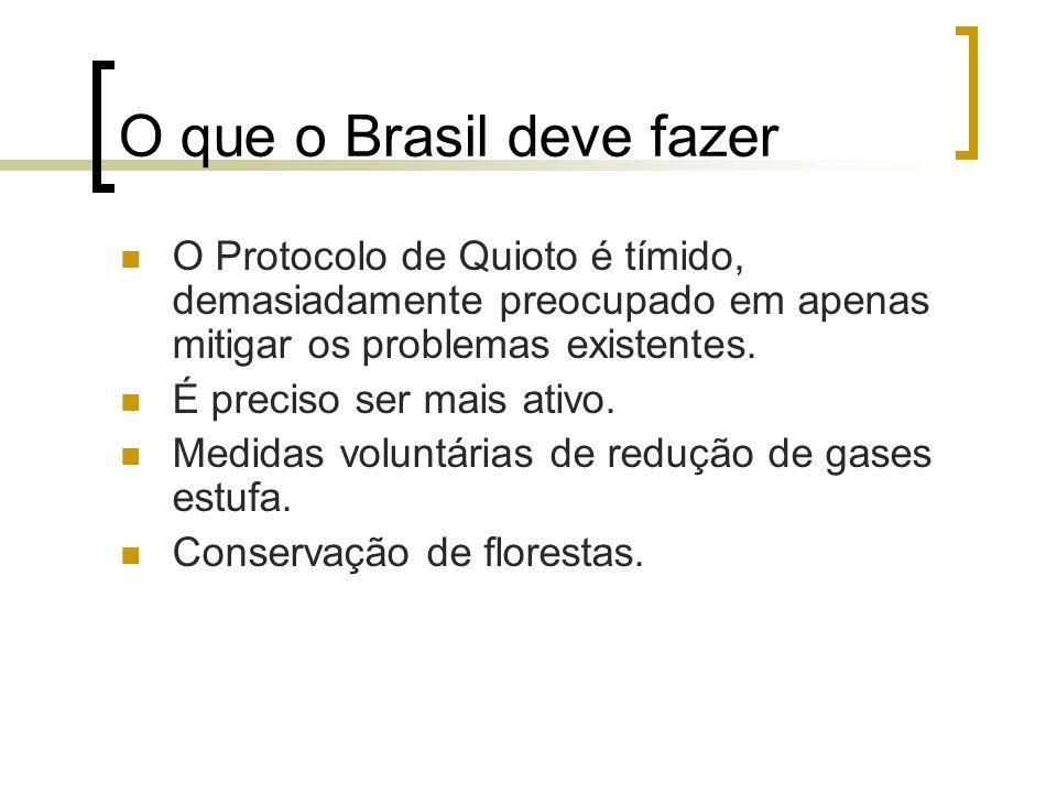 O que o Brasil deve fazer O Protocolo de Quioto é tímido, demasiadamente preocupado em apenas mitigar os problemas existentes. É preciso ser mais ativ
