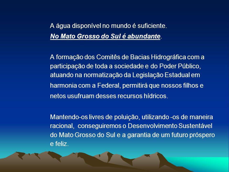 A água disponível no mundo é suficiente. No Mato Grosso do Sul é abundante. A formação dos Comitês de Bacias Hidrográfica com a participação de toda a