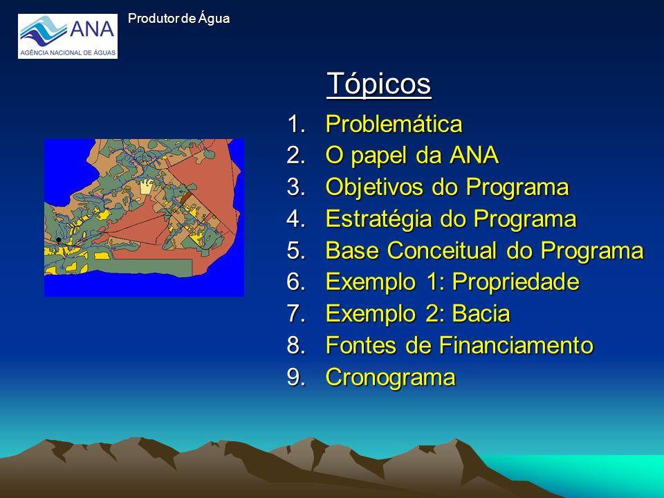Tópicos 1.Problemática 2.O papel da ANA 3.Objetivos do Programa 4.Estratégia do Programa 5.Base Conceitual do Programa 6.Exemplo 1: Propriedade 7.Exem