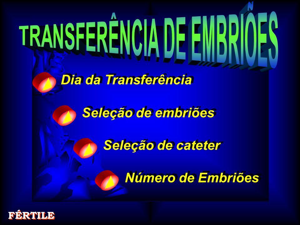 Dia da Transferência Dia da Transferência Seleção de embriões Seleção de embriões Seleção de cateter Seleção de cateter Número de Embriões Número de Embriões FÉRTILE