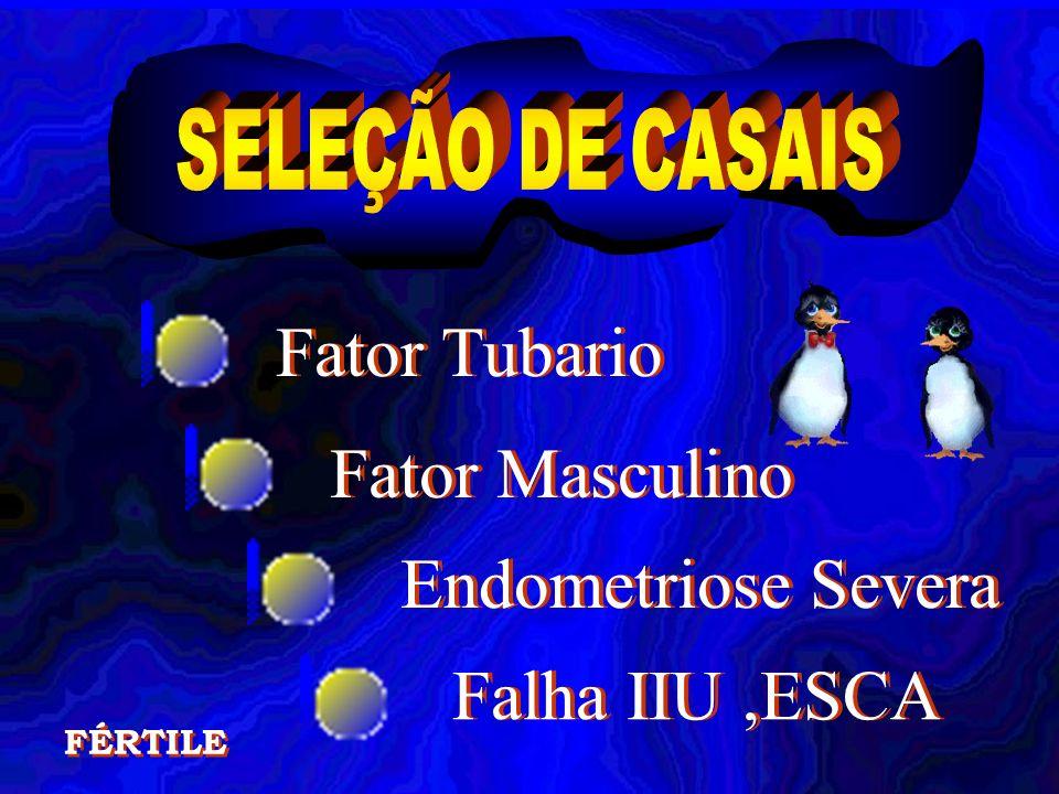 Fator Tubario Fator Masculino Endometriose Severa Falha IIU,ESCA FÉRTILE