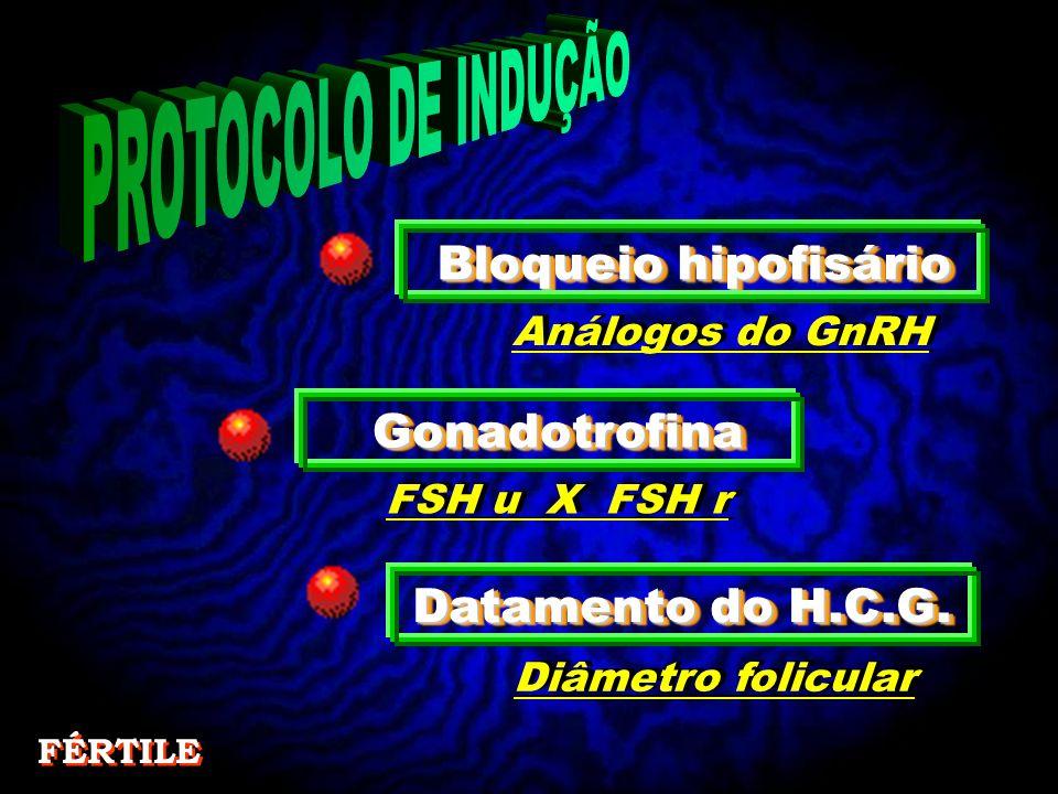Bloqueio hipofisário GonadotrofinaGonadotrofina Datamento do H.C.G.