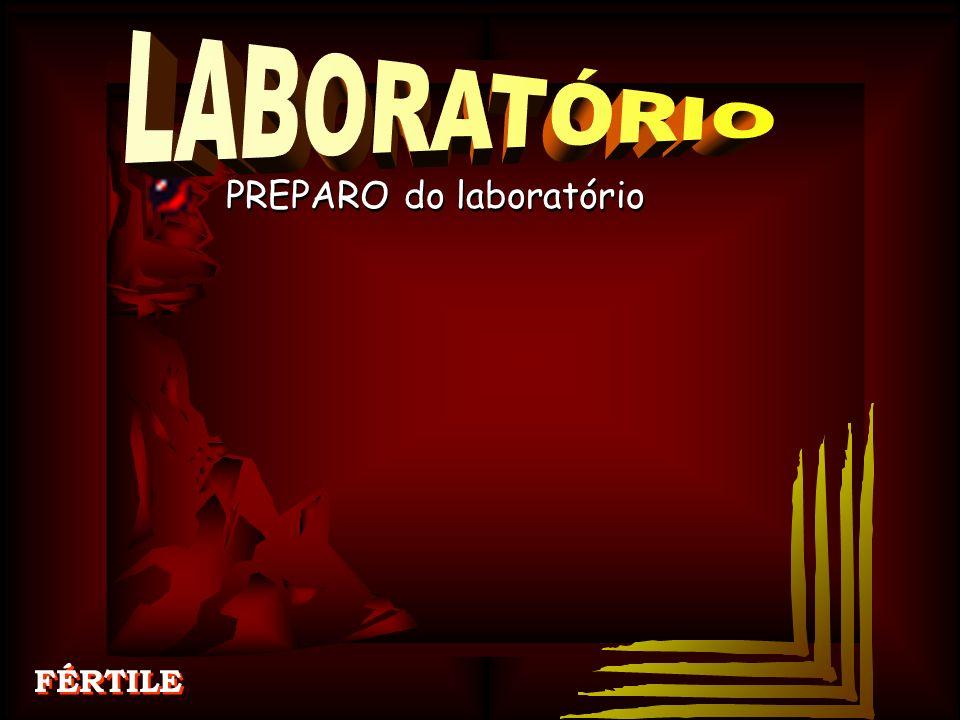 PREPARO do laboratório FÉRTILE