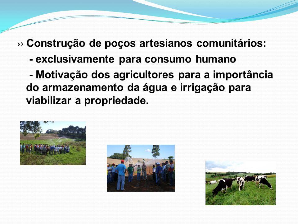 Construção de poços artesianos comunitários: - exclusivamente para consumo humano - Motivação dos agricultores para a importância do armazenamento da