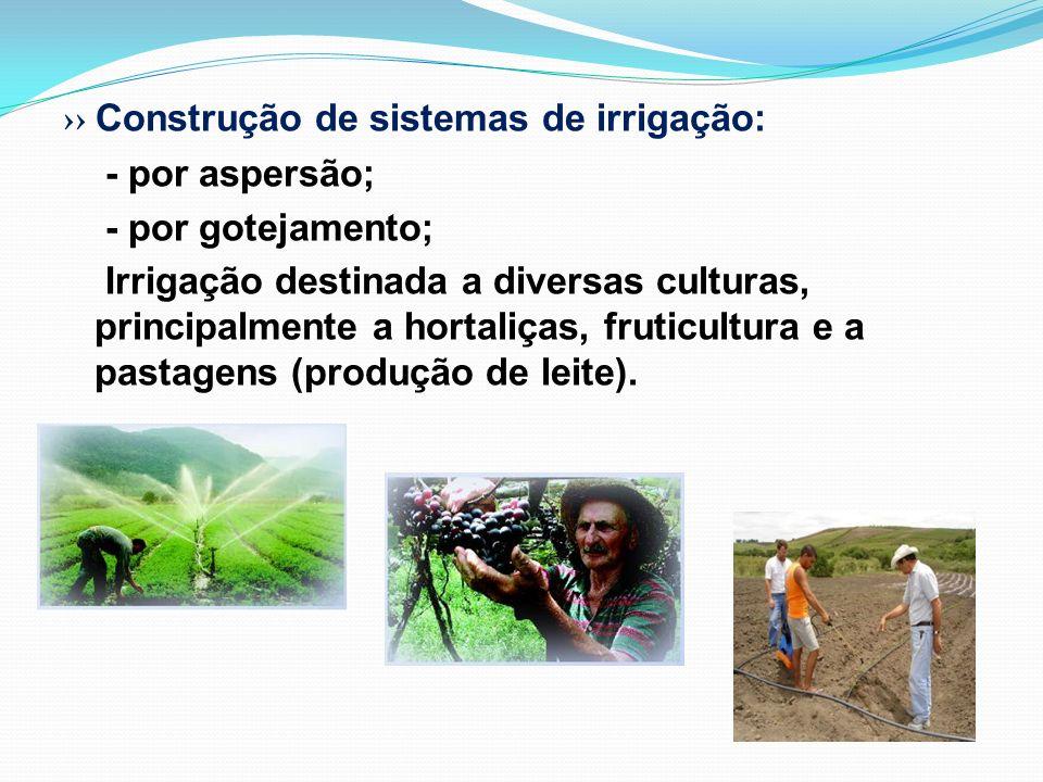Construção de sistemas de irrigação: - por aspersão; - por gotejamento; Irrigação destinada a diversas culturas, principalmente a hortaliças, fruticul